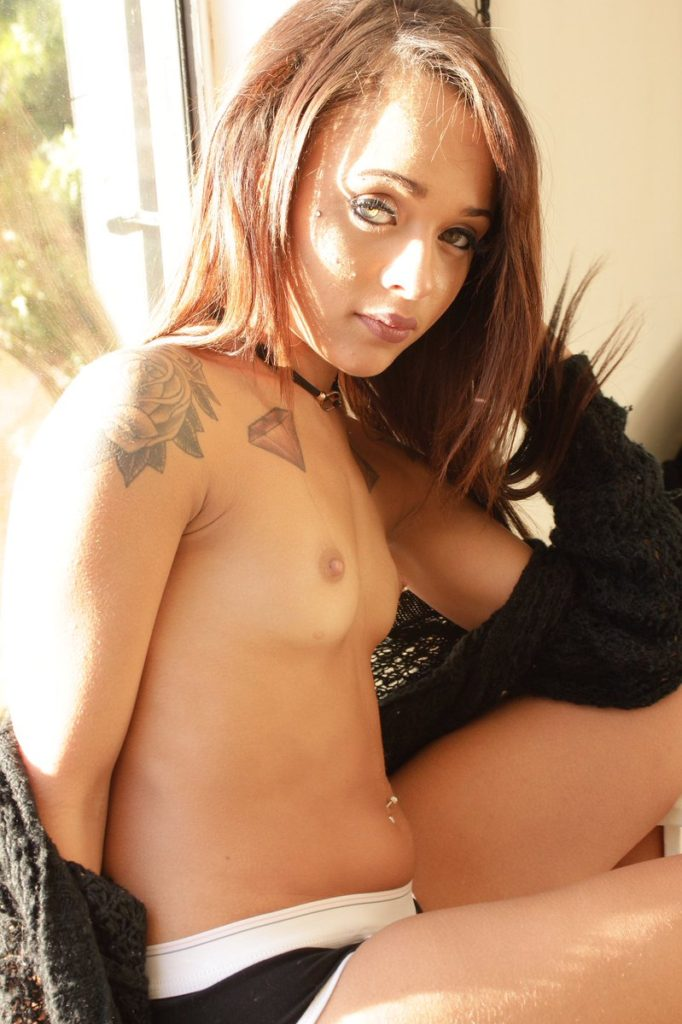 pornstar Holly Hendrix topless